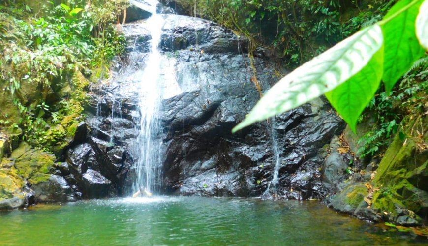 7 cascadas vivenow